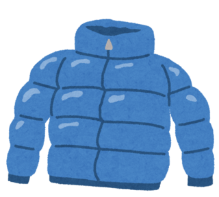 fashion_down_jacket.png